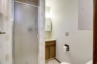 Photo 19: 6135 TOUCHWOOD Drive NW in Calgary: Thorncliffe Detached for sale : MLS®# C4291668