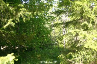 Photo 32: 4827 Goodwin Road in Eagle Bay: Vacant Land for sale : MLS®# 10116745