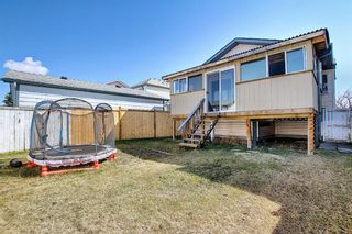 Photo 32: 78 Appleburn Close SE in Calgary: Applewood Park Detached for sale : MLS®# A1100841