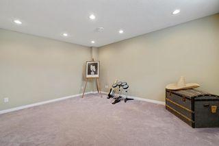 Photo 25: 82 Citadel Mesa Close NW in Calgary: Citadel Detached for sale : MLS®# A1073276