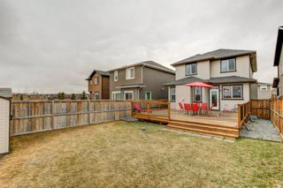 Photo 29: 53 EVANSDALE Landing NW in Calgary: Evanston Detached for sale : MLS®# A1104806