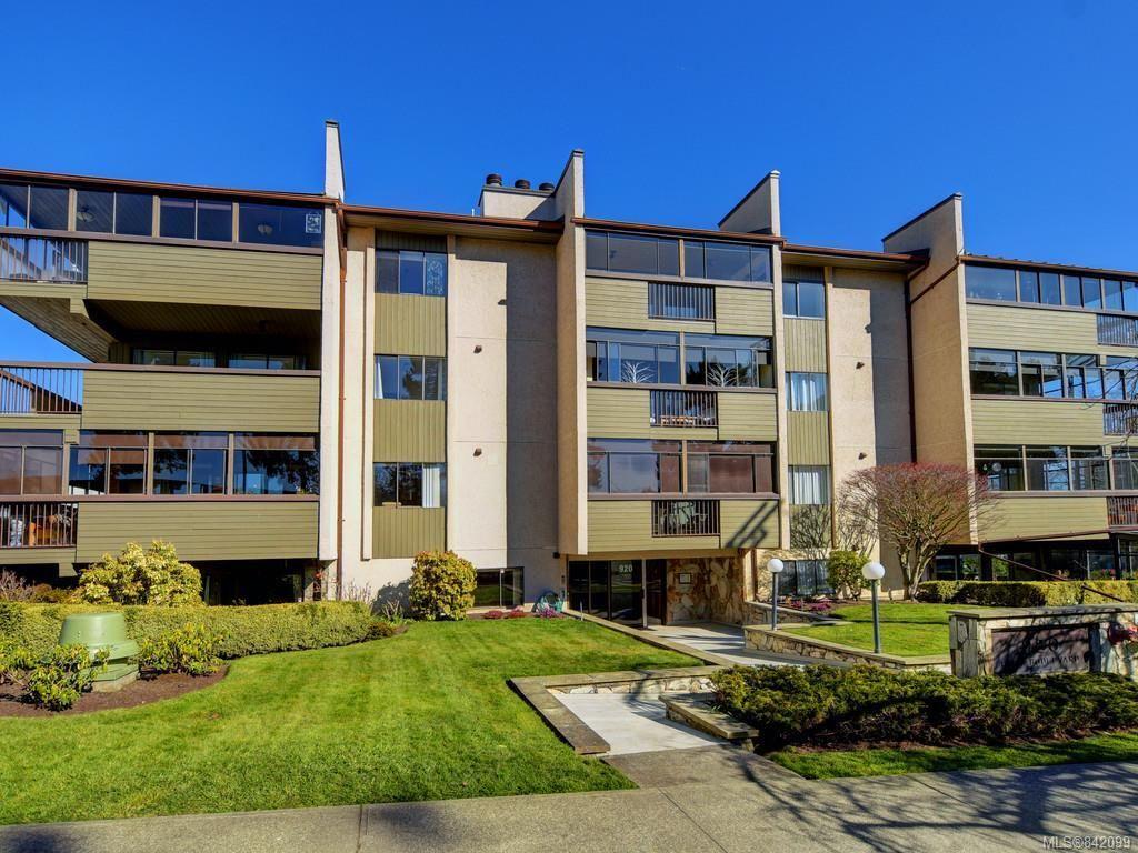 Main Photo: 203 920 Park Blvd in Victoria: Vi Fairfield West Condo for sale : MLS®# 842099