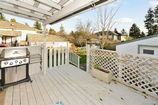 Photo 19: 569 Hurst Ave in VICTORIA: SW Glanford House for sale (Saanich West)  : MLS®# 832507