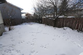 Photo 28: 547 Templeby Place NE in Calgary: Temple Detached for sale : MLS®# A1071164