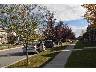 Photo 26: 269 SILVERADO Way SW in Calgary: Silverado House for sale : MLS®# C4082092