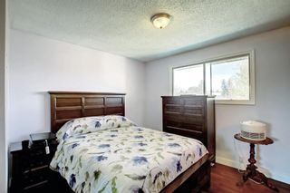 Photo 19: 1931 Pinetree Crescent NE in Calgary: Pineridge Detached for sale : MLS®# A1153335
