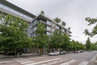 "Photo 4: 203 3382 WESBROOK Mall in Vancouver: University VW Condo for sale in ""Tapestry at Wesbrook"" (Vancouver West)  : MLS®# R2470195"