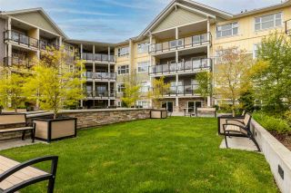"""Photo 25: 407 5020 221A Street in Langley: Murrayville Condo for sale in """"Murrayville house"""" : MLS®# R2572110"""