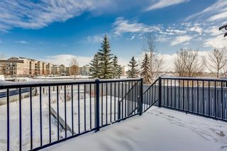 Photo 28: 444 WILLOWBROOK Close NW: Airdrie Detached for sale : MLS®# A1065884