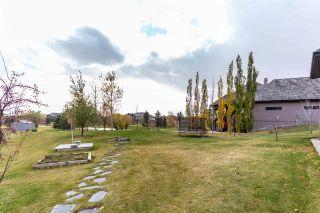 Photo 48: 70 Greystone Drive: Rural Sturgeon County House for sale : MLS®# E4226808