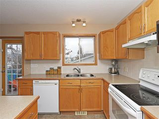 Photo 10: 191 STRATHAVEN Crescent: Strathmore House for sale : MLS®# C4088087