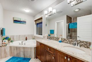 Photo 36: 102 Saddlelake Way NE in Calgary: Saddle Ridge Detached for sale : MLS®# A1092455