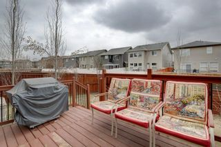 Photo 28: 53 Legacy Terrace SE in Calgary: Legacy Detached for sale : MLS®# A1098878