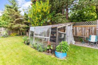 """Photo 36: 14271 67 Avenue in Surrey: East Newton House for sale in """"HYLAND"""" : MLS®# R2581926"""