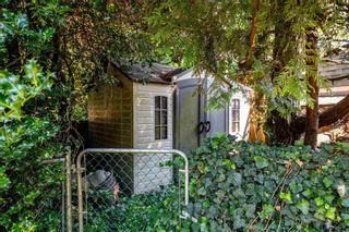 Photo 34: 9964 SHAMROCK Drive in Chilliwack: Fairfield Island House for sale : MLS®# R2601980