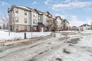 Photo 1: 211 37 Prestwick Drive SE in Calgary: McKenzie Towne Apartment for sale : MLS®# A1055114