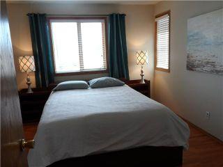 Photo 9: 15 MACEWAN MEADOW Rise NW in CALGARY: MacEwan Glen Residential Detached Single Family for sale (Calgary)  : MLS®# C3584201