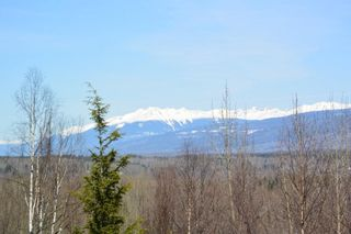 Photo 31: 3160 BOYLE Road in Smithers: Smithers - Rural House for sale (Smithers And Area (Zone 54))  : MLS®# R2569460