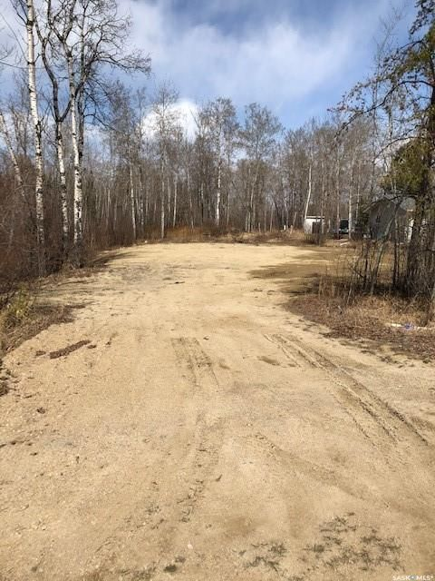 Main Photo: 214 Crestview Drive in Emma Lake: Lot/Land for sale : MLS®# SK851468