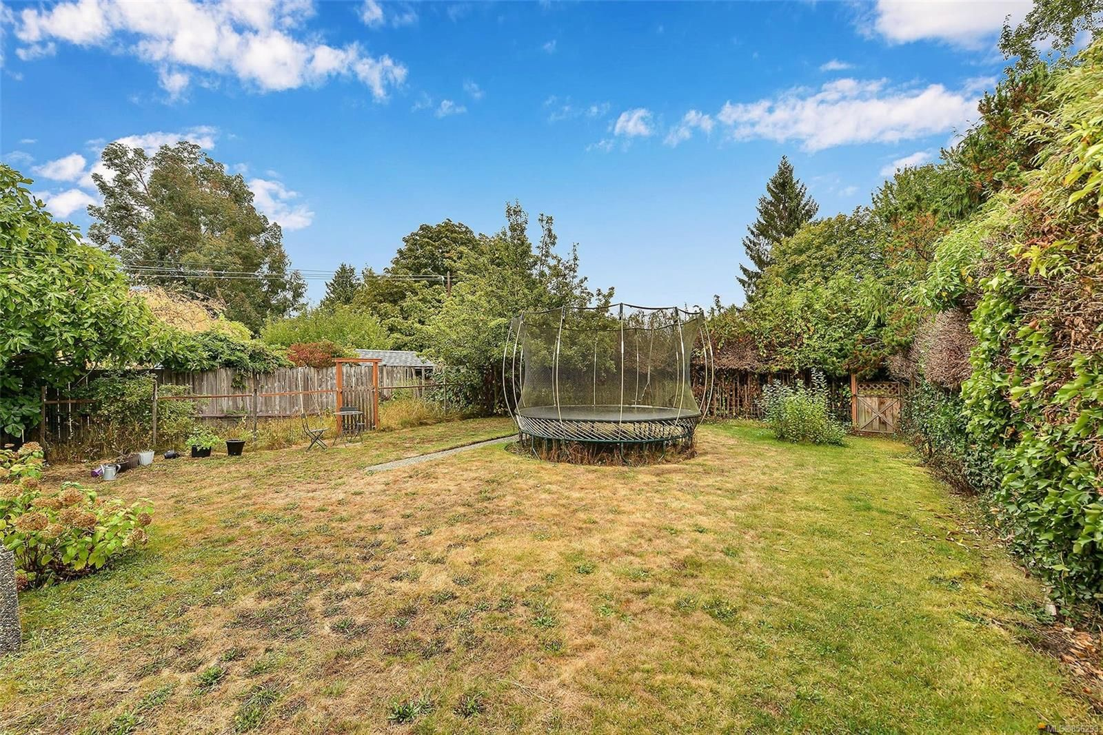 Photo 35: Photos: 1753 Armstrong Ave in : OB North Oak Bay House for sale (Oak Bay)  : MLS®# 856293