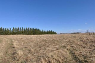 Photo 16: 10 57126 Range Road 12: Rural Barrhead County Rural Land/Vacant Lot for sale : MLS®# E4241768