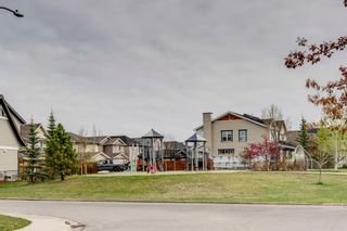 Photo 47: 1571 COPPERFIELD Boulevard SE in Calgary: Copperfield Detached for sale : MLS®# A1107569