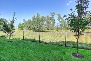 Photo 44: 58 Discovery Heights SW in Calgary: Discovery Ridge Row/Townhouse for sale : MLS®# A1147768