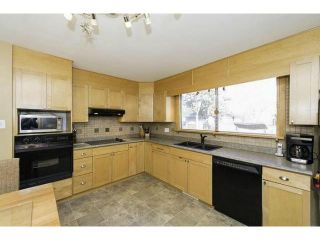 Photo 9: 87 Thatcher Drive in WINNIPEG: Fort Garry / Whyte Ridge / St Norbert Residential for sale (South Winnipeg)  : MLS®# 1308215