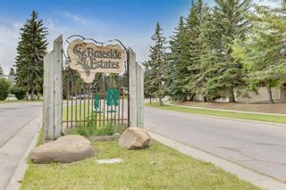 Photo 44: 56 BROOKPARK Mews SW in Calgary: Braeside Detached for sale : MLS®# A1018102