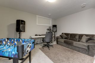Photo 35: 5208 ADMIRAL WALTER HOSE Street in Edmonton: Zone 27 House for sale : MLS®# E4226677