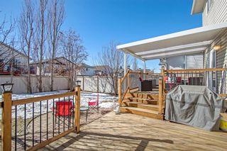 Photo 24: 105 Stonegate Place NW: Airdrie Detached for sale : MLS®# A1078446