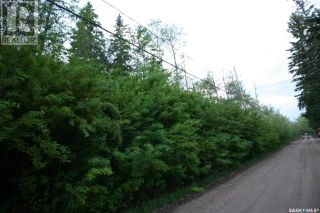 Photo 2: 156 Carwin Park DR in Emma Lake: Vacant Land for sale : MLS®# SK846952