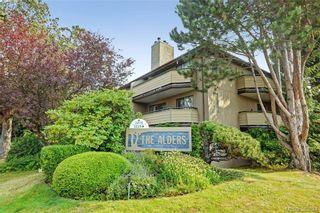 Photo 1: 306 3215 Alder St in VICTORIA: SE Quadra Condo for sale (Saanich East)  : MLS®# 770983