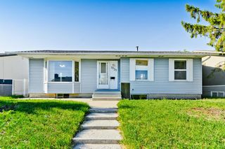 Main Photo: 1031 Pensdale Crescent SE in Calgary: Penbrooke Meadows Detached for sale : MLS®# A1114957