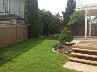 Photo 9: 22878 REID AV in Maple Ridge: East Central House for sale : MLS®# V1028587