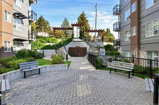 Photo 25: 305 1016 Inverness Rd in Saanich: SE Quadra Condo for sale (Saanich East)  : MLS®# 887970