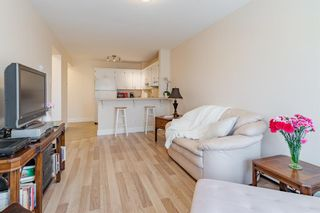 Photo 16: 16 101 25 Avenue SW in Calgary: Mission Apartment for sale : MLS®# A1081239