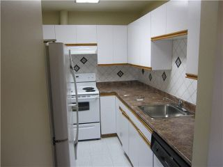 """Photo 5: 443 22661 LOUGHEED Highway in Maple Ridge: East Central Condo for sale in """"GOLDEN EARS GATE"""" : MLS®# V1086025"""