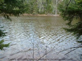 Photo 13: LOT 07-8 Lot07-8 KERRS MILLS Road in Wallace River West: 103-Malagash, Wentworth Vacant Land for sale (Northern Region)  : MLS®# 5161969