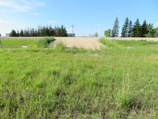Photo 7: 0 PTH 15 Highway in Dugald: RM Springfield Vacant Land for sale (R04)  : MLS®# 202016001