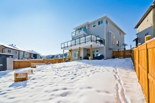 Photo 32: 133 Nolanhurst Place NW in Calgary: Nolan Hill Detached for sale : MLS®# A1067487