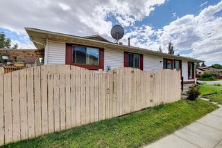 Photo 43: 217 Templemont Drive NE in Calgary: Temple Semi Detached for sale : MLS®# A1120693
