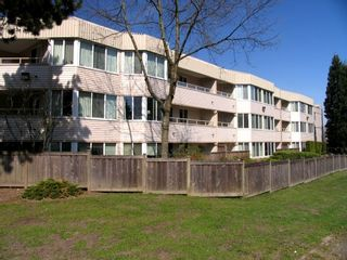 Photo 1: #119 9635 121 Street in Surrey: Condo for sale : MLS®# F2908608