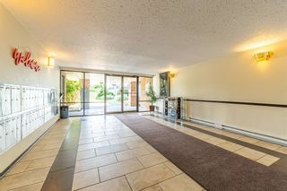 Photo 24: 308 45598 MCINTOSH Drive in Chilliwack: Chilliwack W Young-Well Condo for sale : MLS®# R2603170