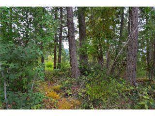 "Photo 9: LOT F REDROOFFS ROAD in Halfmoon Bay: Halfmn Bay Secret Cv Redroofs Land for sale in ""HALFMOON BAY"" (Sunshine Coast)  : MLS®# R2035709"