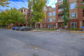 Photo 29: 2101 24 Hemlock Crescent SW in Calgary: Spruce Cliff Apartment for sale : MLS®# A1038232