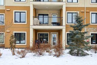 Photo 8: 101 1031 173 Street SW in Edmonton: Zone 56 Condo for sale : MLS®# E4223947