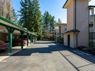 Photo 31: 14 1876 Comox Ave in COMOX: CV Comox (Town of) Condo for sale (Comox Valley)  : MLS®# 845695