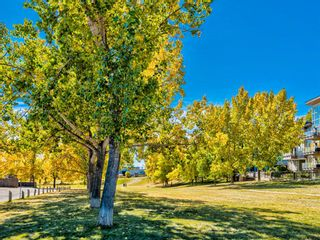 Photo 19: 412A 4455 Greenview Drive NE in Calgary: Greenview Apartment for sale : MLS®# A1101294