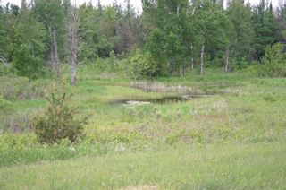Photo 12: Lot 17 Con 2 in Amaranth: Rural Amaranth Property for sale : MLS®# X4680333